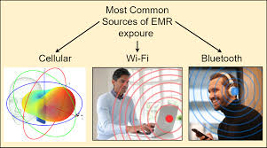 Electromagnetic Radiation due to Cellular, Wi-Fi and Bluetooth t